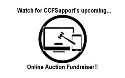 VIRTUAL COMMUNITY AUCTION FUNDRAISER